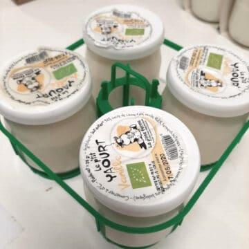 4 yaourts vanille bio