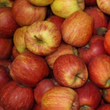 Pommes Royale Gala 1kg